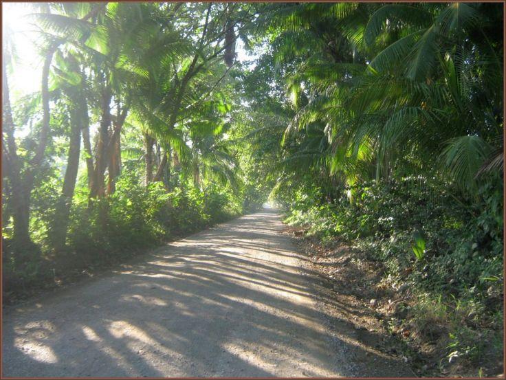 Road_Zancudo