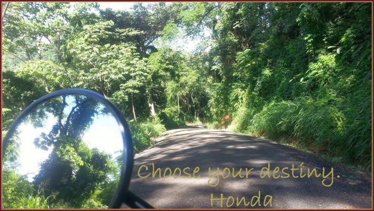 Choose_your_destiny_Bijagual