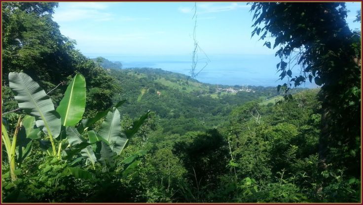 ViewBijagual2