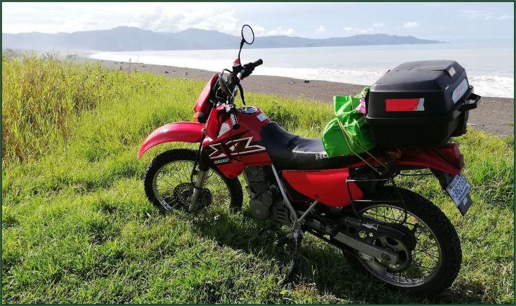 HondaGucalillo2