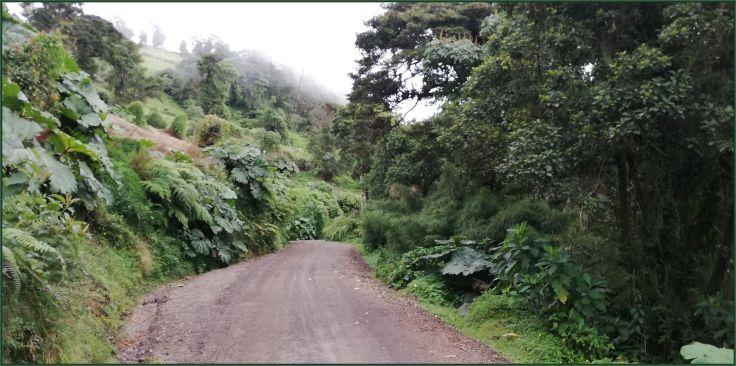 Route417_Nine