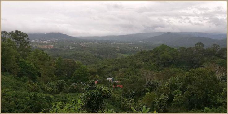 ViewPalmaresRoad