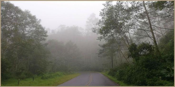 fog126