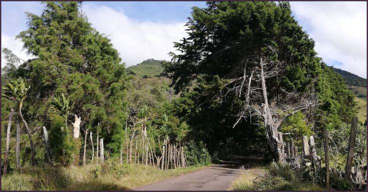 MountainRoad3