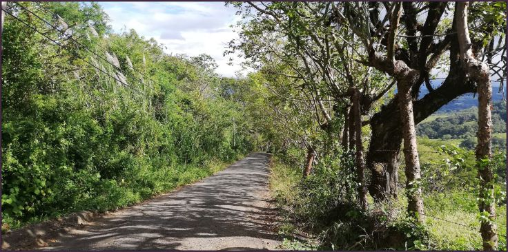 Road136