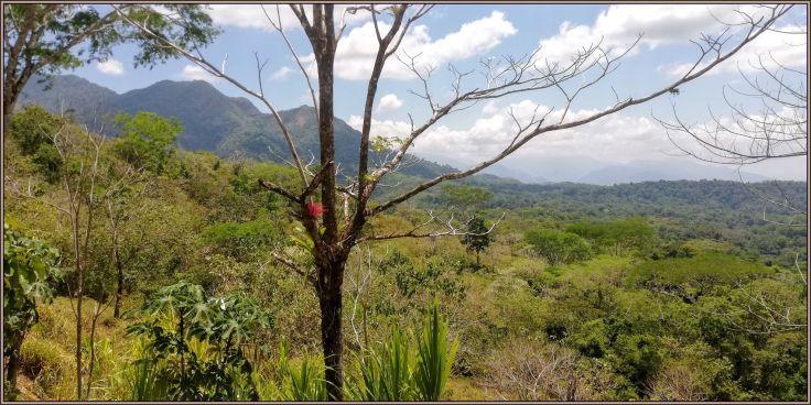 ParqueLaCangrejaLeft