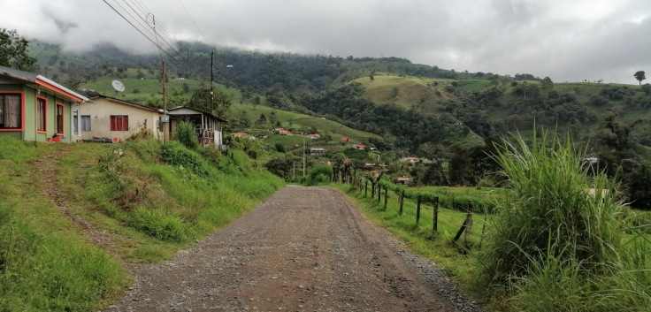 RoadGuayabo1